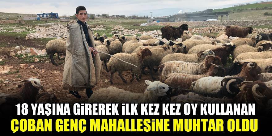 18 yaşına girerek ilk kez oy kullanan çoban genç mahallesine muhtar oldu