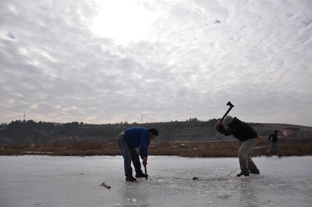 """Kızılırmak'ta """"Eskimo usulü"""" balık avı 12"""