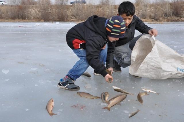 """Kızılırmak'ta """"Eskimo usulü"""" balık avı 13"""