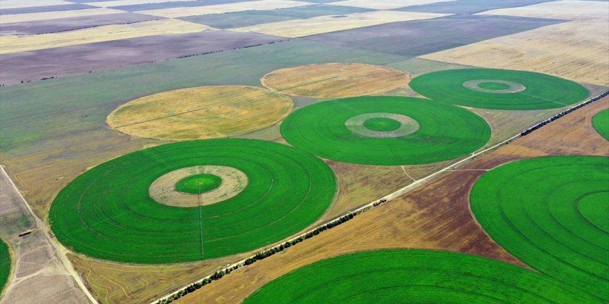 Konya'nın devasa dairesel tarlaları gökyüzünden görüntülendi