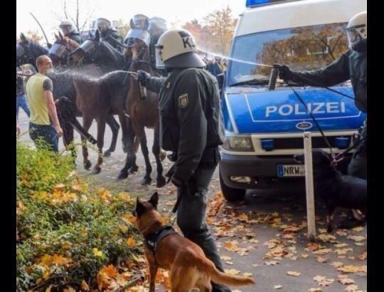 Almanya Polisi Göstericilere Canine Saldırdı 18