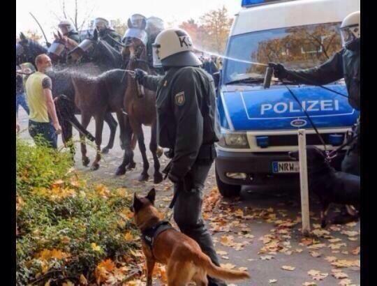 Almanya Polisi Göstericilere Canine Saldırdı 7