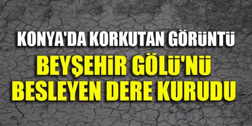 Konya Beyşehir Gölü'nü besleyen dere kurudu