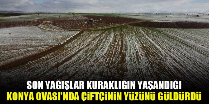 Son yağışlar Konya Ovası'nda yüzleri güldürdü