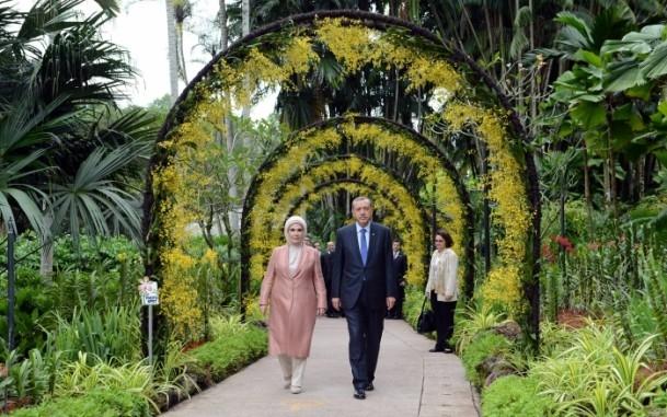 Başbakan Erdoğan ve eşinin ismi orkideye verildi 10