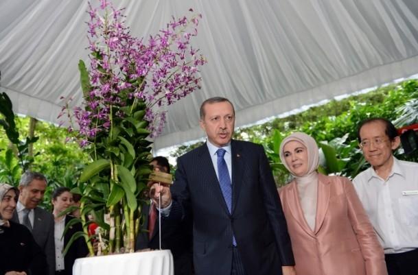 Başbakan Erdoğan ve eşinin ismi orkideye verildi 4