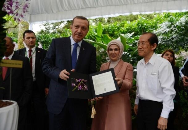 Başbakan Erdoğan ve eşinin ismi orkideye verildi 9