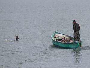 Dondurucu soğuğa rağmen avlanıyorlar