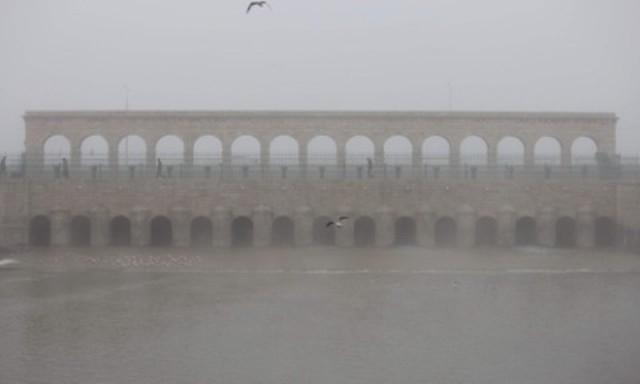 Beyşehirli balıkçıları şimdi de sisli hava vurdu 8