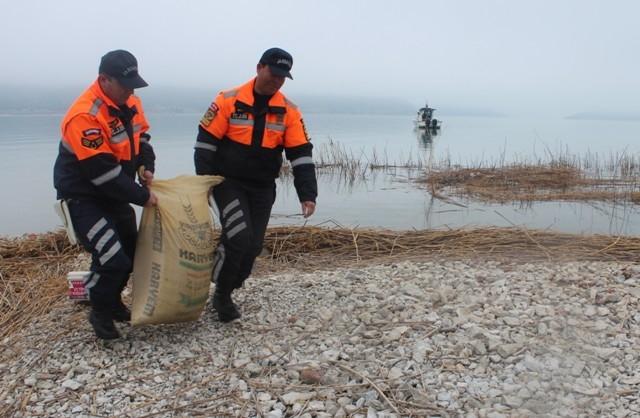 Jandarma Beyşehir Gölü adasındaki yabani tavşanlara yem bıraktı 3