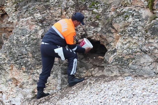 Jandarma Beyşehir Gölü adasındaki yabani tavşanlara yem bıraktı 5