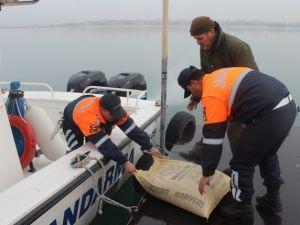 Jandarma Beyşehir Gölü adasındaki yabani tavşanlara yem bıraktı
