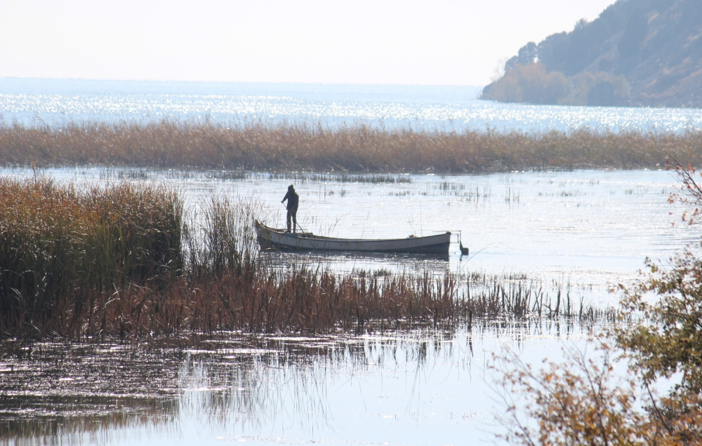 Beyşehir Gölü'nden geçen yıl 225 ton balık çıktı 5