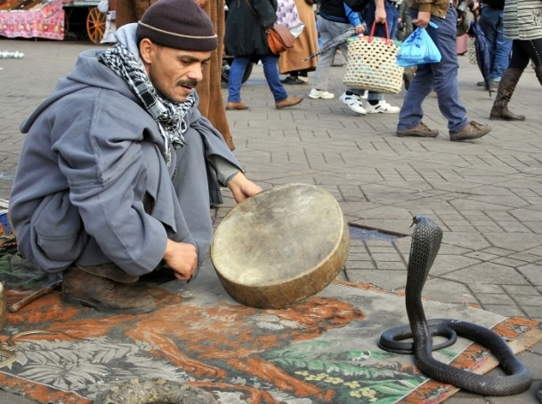 Faslı ''Halaka sanatçıları'' tarihi canlı tutuyor 7