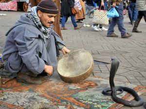 Faslı ''Halaka sanatçıları'' tarihi canlı tutuyor