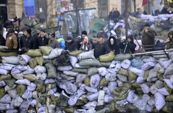 Ukrayna'da hükümet karşıtı gösteriler 4