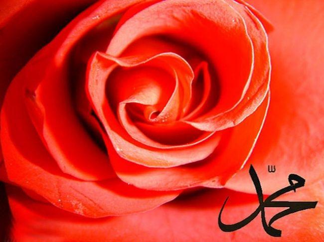 Peygamber Efendimiz (s.a.v)'in Kıyamet Alametleri 11