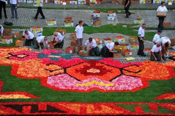 Brüksel'de çiçekten Türk halısı 3