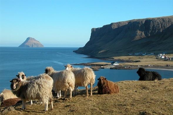 Dünyanın en ilginç adaları 36