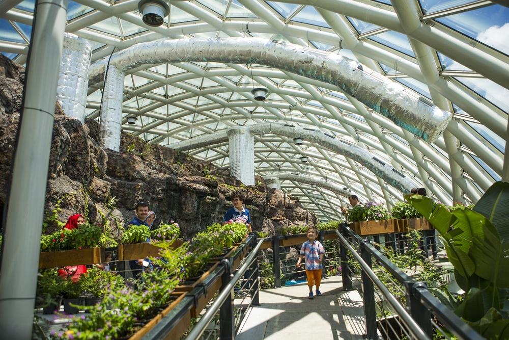 Konya Tropikal Kelebek Bahçesi 6