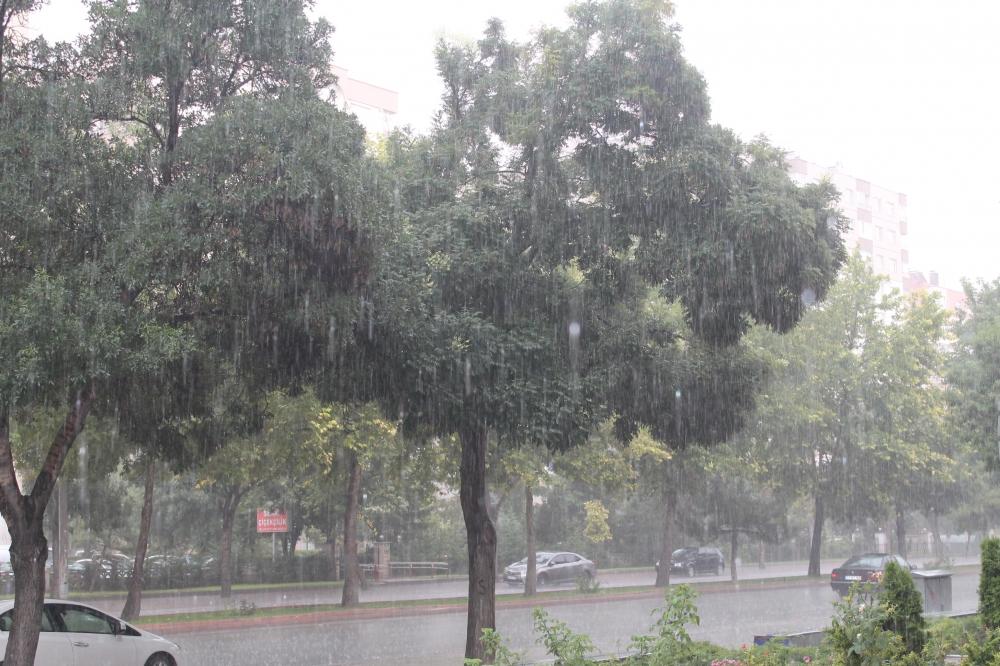Yağmur serinletti 4