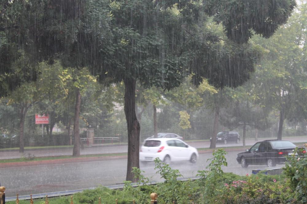 Yağmur serinletti 7