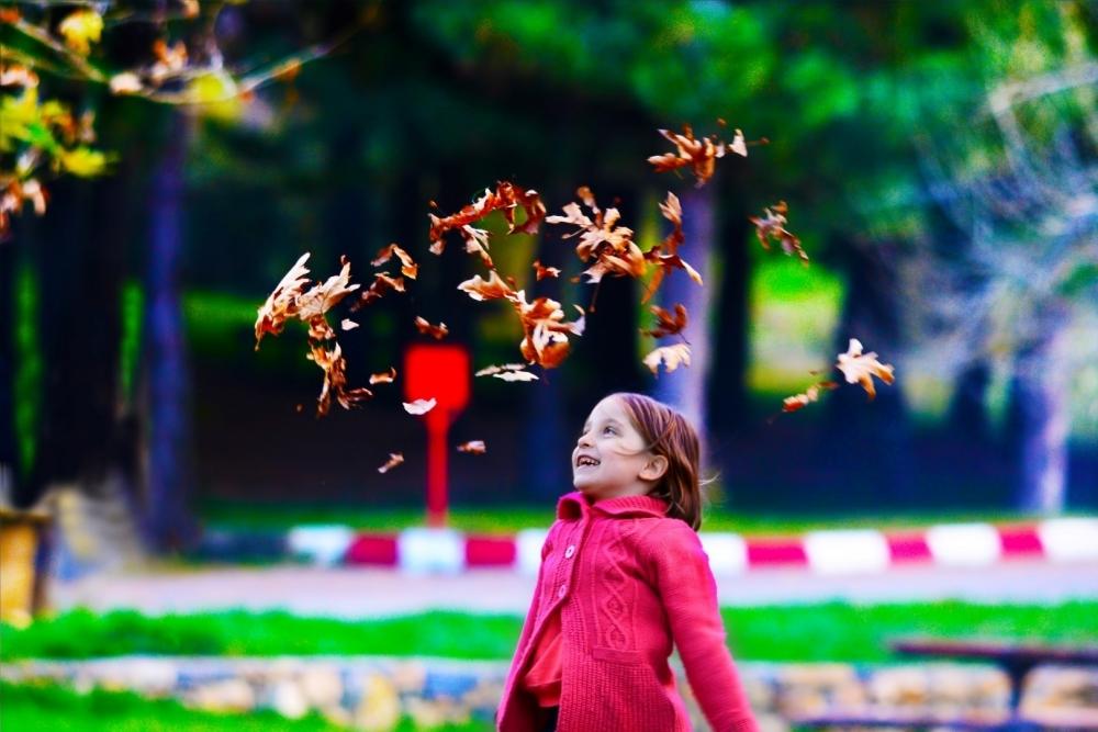Konya'da sonbahar 13