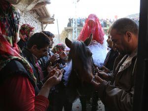 Torosların asırlık düğün geleneği