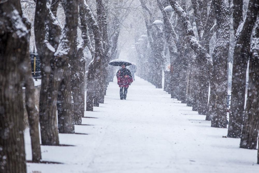 Konya'da kar yağışı 6