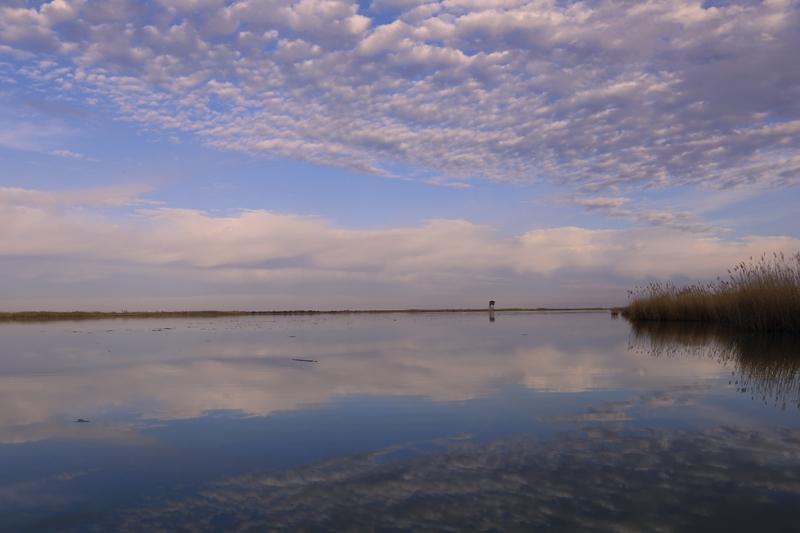 Akgöl sazlıkları göçmen misafirlerini bekliyor 4