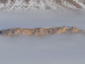 Konya 'da sis