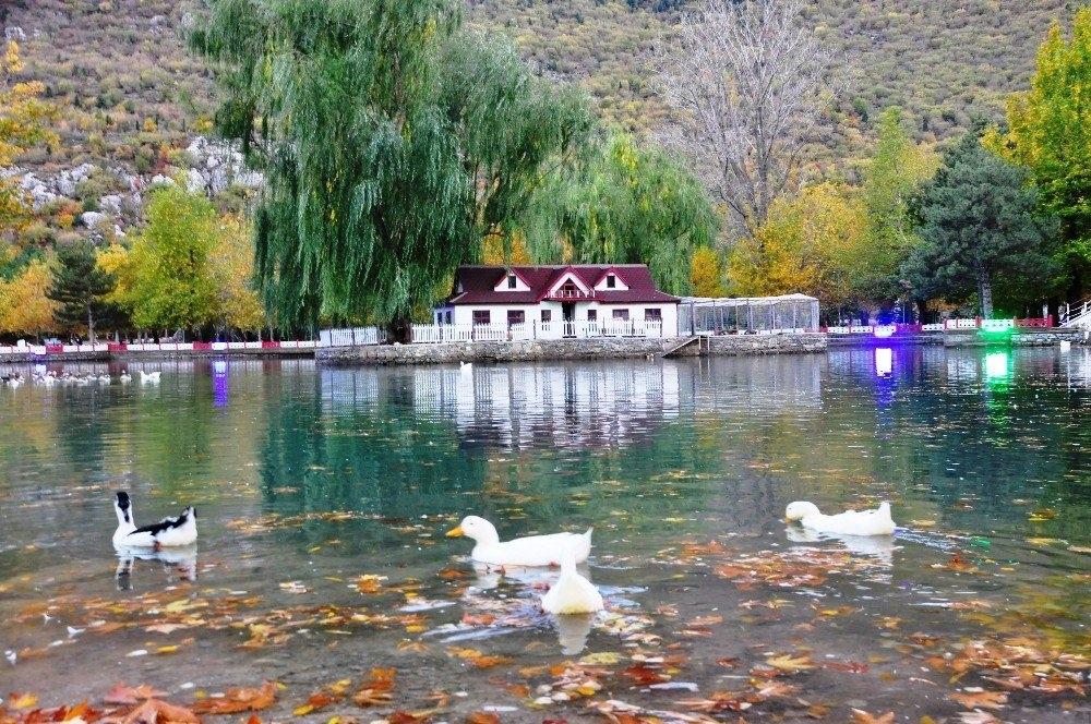 Konya'da Kuğulu Park'tan kartpostallık görüntüler 1