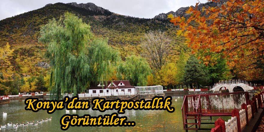 Konya'da Kuğulu Park'tan kartpostallık görüntüler
