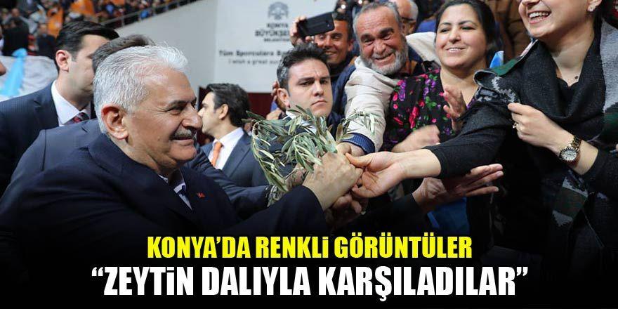 Başbakan Yıldırım'ı zeytin dalıyla karşıladılar