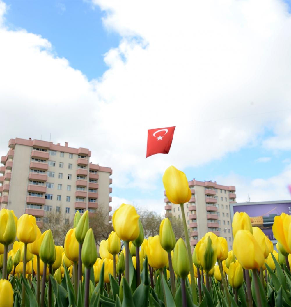 """Konya'da """"Lale Mevsimi"""" başladı 1"""