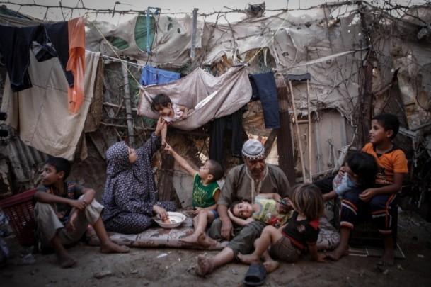 2013 Anadolu Ajansı Yılın Fotoğrafları Yarışması sonuçlandı 6