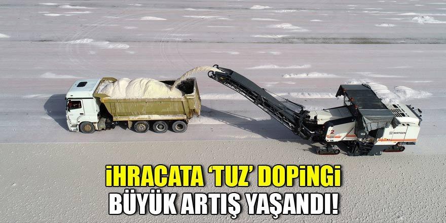 "İhracata ""tuz"" dopingi"
