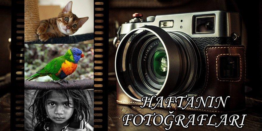 Haftanın fotoğrafları