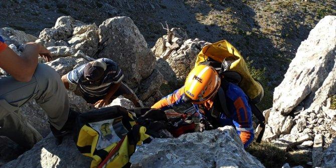 Konya'da kayalıklarda mahsur kalan oğlaklar AFAD ekiplerince kurtarıldı