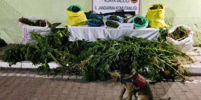 Samanlar arasında 23 kilo esrar ele geçirildi