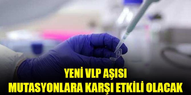 Yeni VLP aşısı mutasyonlara karşı etkili olacak