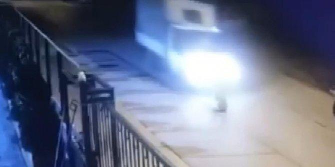 Kamyonetin ezdiği köpek öldü; sürücü durmayarak yoluna devam etti