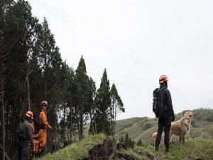 Japonya'da ceza için ormanda bırakılan çocuk bulunamadı