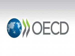 OECD'ye göre Türkiye büyümede Avro Bölgesini geçecek