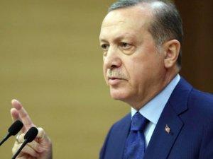 Erdoğan'dan Bloomberg'e 'Muhammed Ali' makalesi