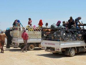 Felluce'den 3 bin 708 aile güvenli bölgelere göç etti