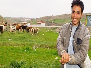 Suriyeliler çobanlık yaparak geçimini temin ediyor
