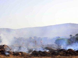 Bodrum'daki makilik alanda çıkan yangın kontrol altına alındı