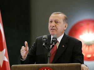 Abdülkadir Geylani'nin torunundan Erdoğan'a destek darbeye tepki