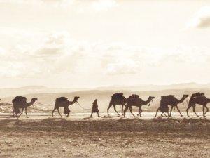 9 ayda kutsal topraklara yolculuk